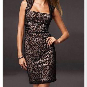 Moda International Cheetah Lace Dress